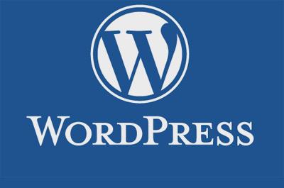 Wordpress Teaser