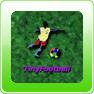 Tiny Football